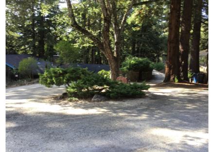 Zen Driveway